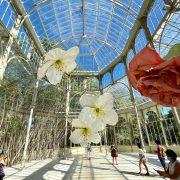 Exposición de Petrit Halilaj en el Palacio de Cristal hasta el 28 de febrero de 2021